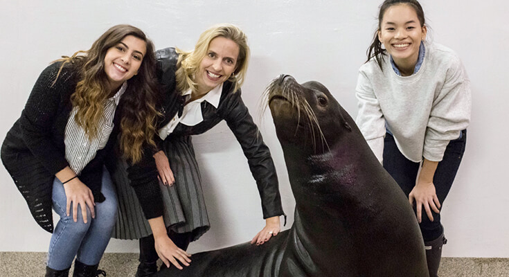 Students with California Sealion