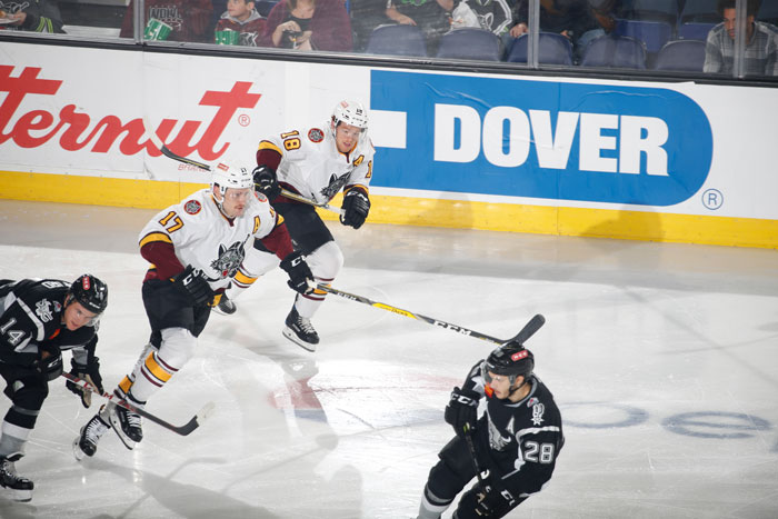 Chicago Wolves hockey game